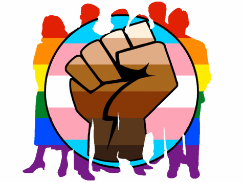 The 2020 election and popular culture have proven that trans visibility is higher than ever before, but acts of prejudice continue persist, including right here in Minnesota.