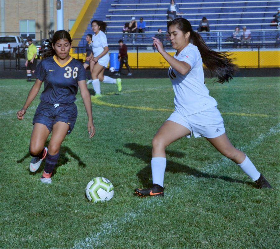 Sophomore Adriana Cardoso (36) defends during a varsity home game against Minneapolis Roosevelt.